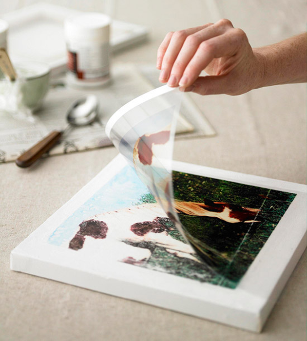 10 Must-Try Image Transfer Projects